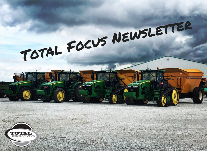 Total Focus Newsletter